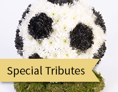 special tributes feature