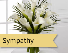 sympathy feature image