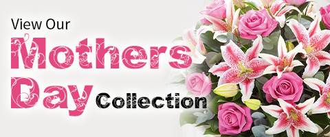 mothers day collection feature